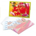 Pflastermäppchen Tulpenblüte
